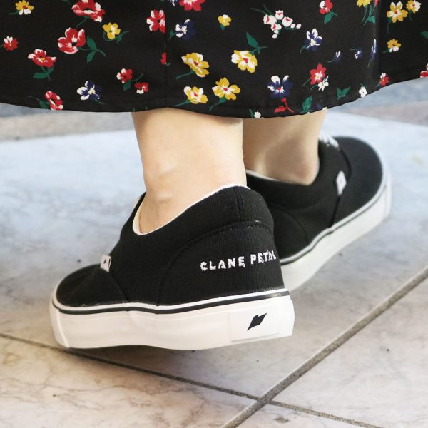 clane_figure