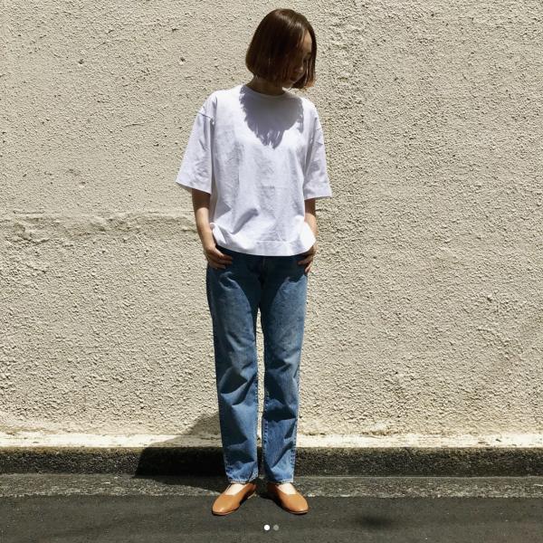 shinzone_figre